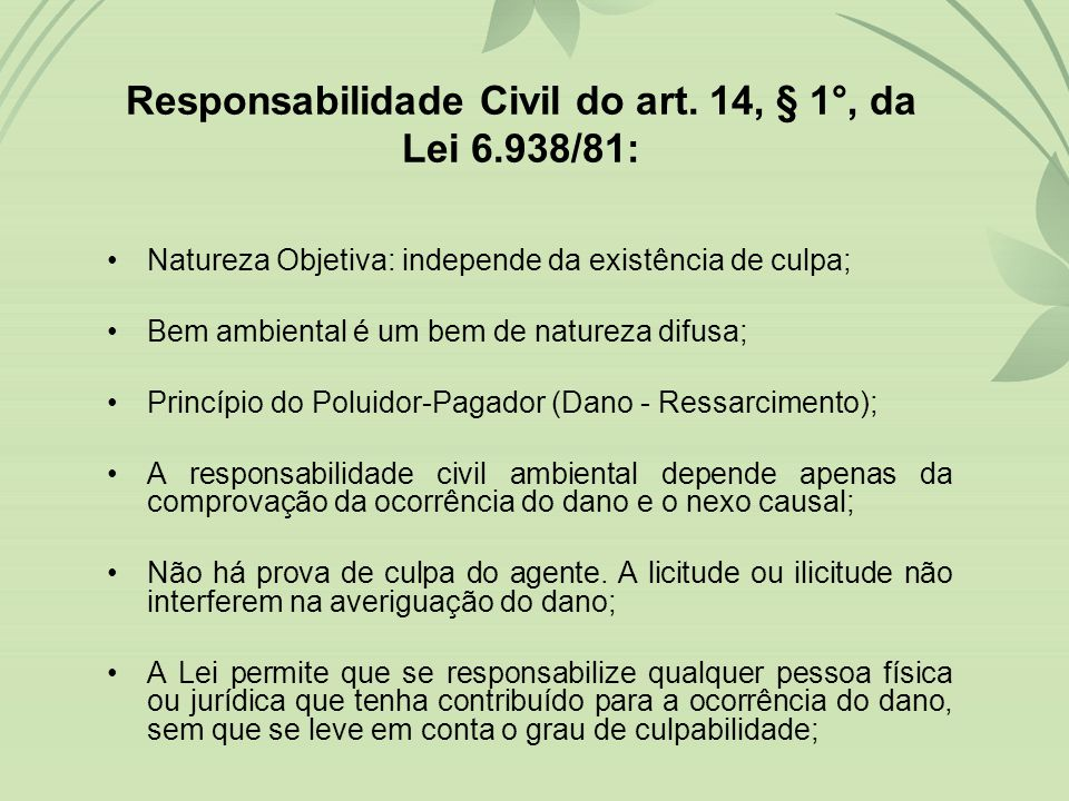 Responsabilidade Civil do art. 14, § 1°, da Lei 6.938/81: