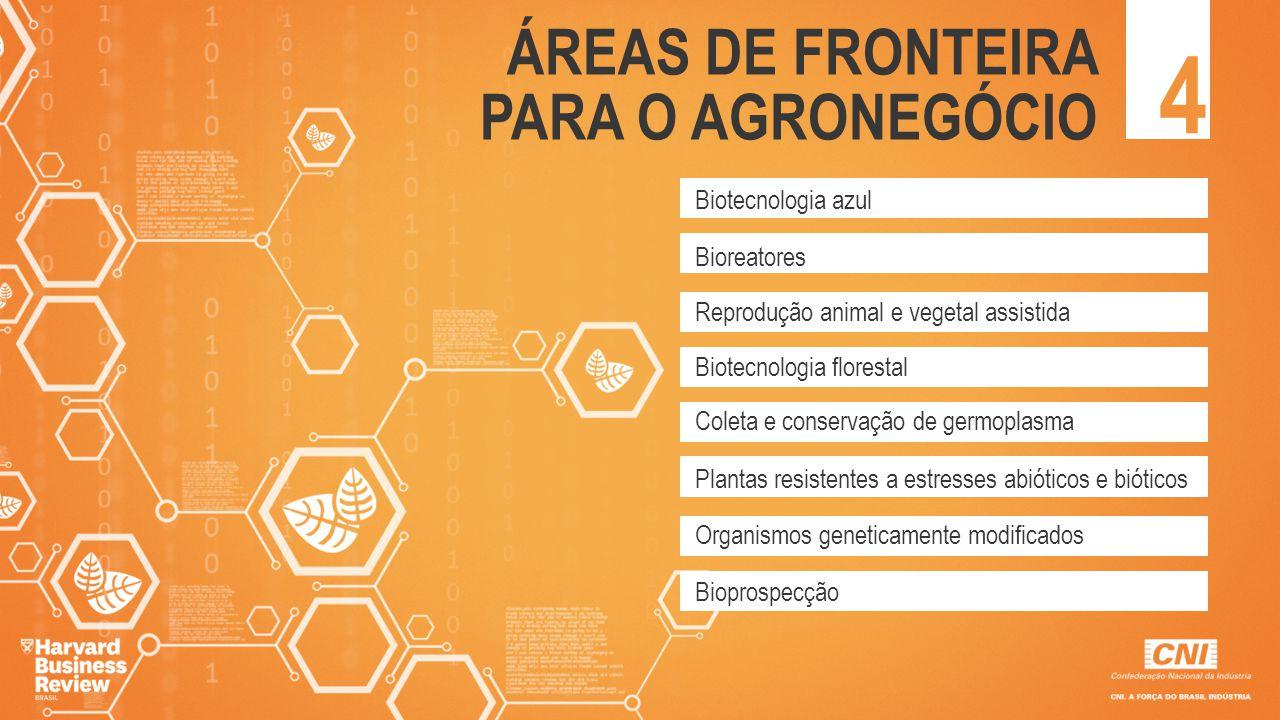 4 ÁREAS DE FRONTEIRA PARA O AGRONEGÓCIO Biotecnologia azul Bioreatores