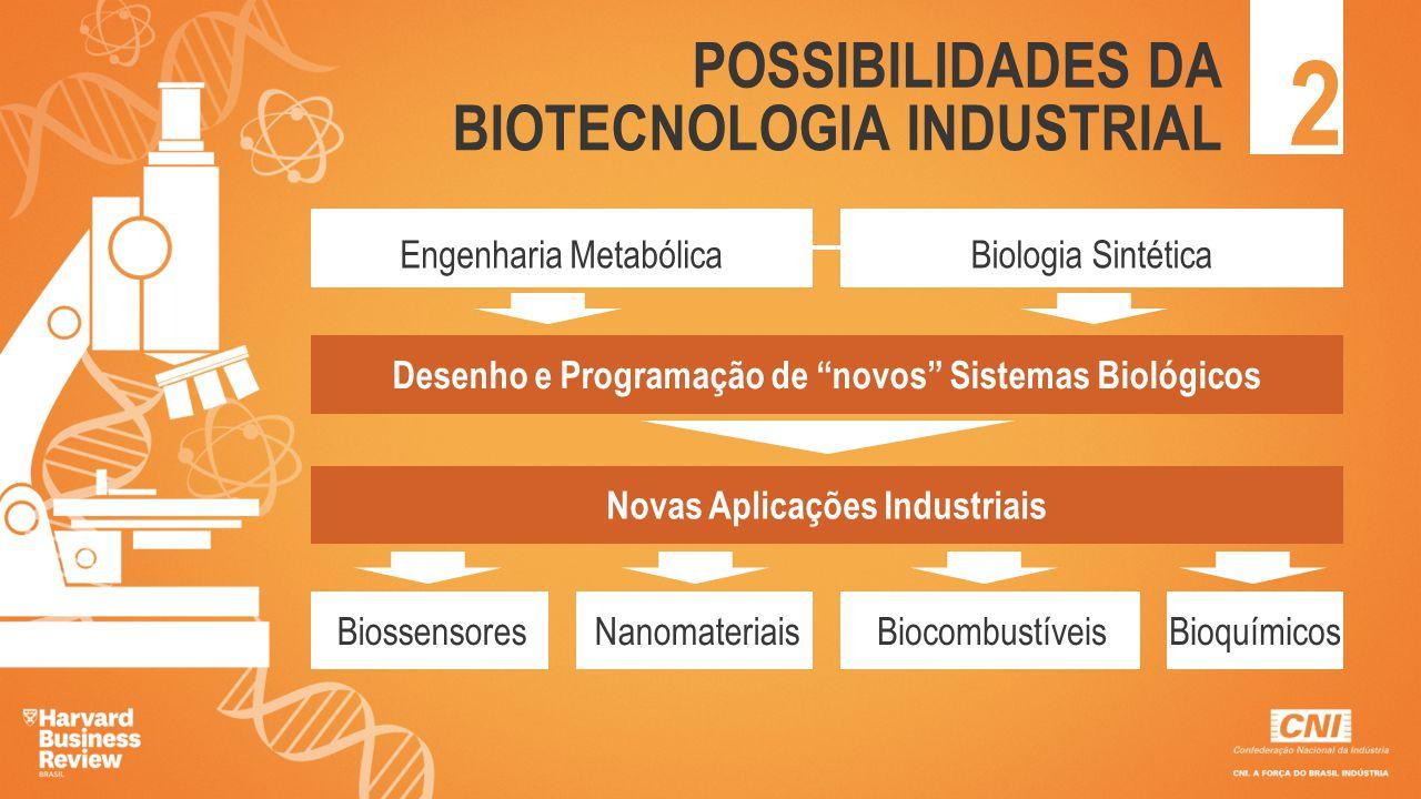 2 POSSIBILIDADES DA BIOTECNOLOGIA INDUSTRIAL Engenharia Metabólica