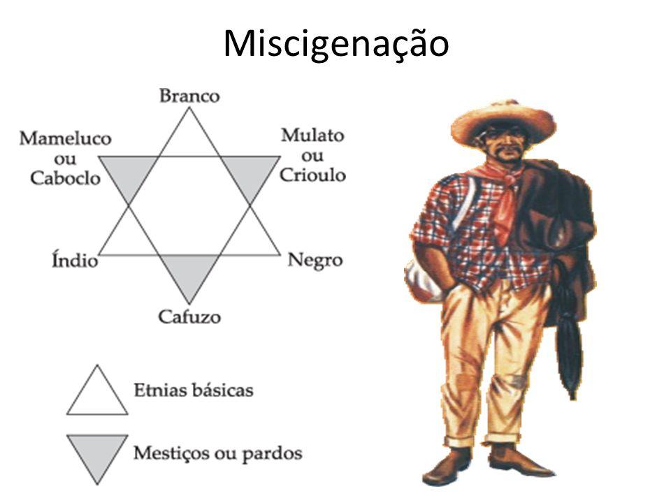 Miscigenação