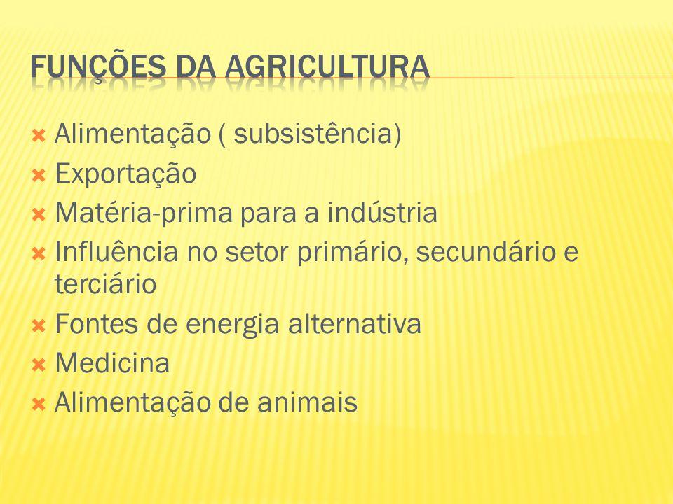 Funções da agricultura
