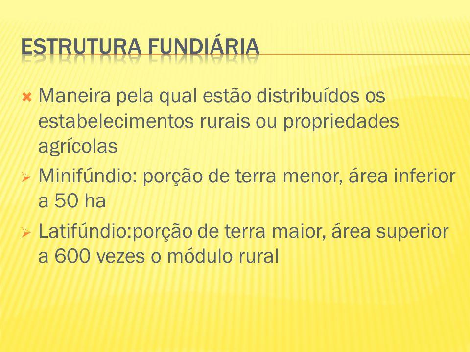 Estrutura fundiária Maneira pela qual estão distribuídos os estabelecimentos rurais ou propriedades agrícolas.