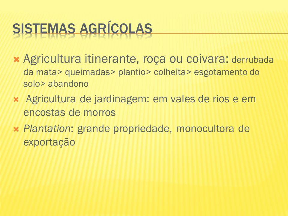 Sistemas agrícolas Agricultura itinerante, roça ou coivara: derrubada da mata> queimadas> plantio> colheita> esgotamento do solo> abandono.