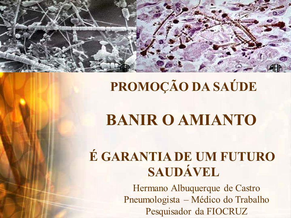 BANIR O AMIANTO PROMOÇÃO DA SAÚDE É GARANTIA DE UM FUTURO SAUDÁVEL