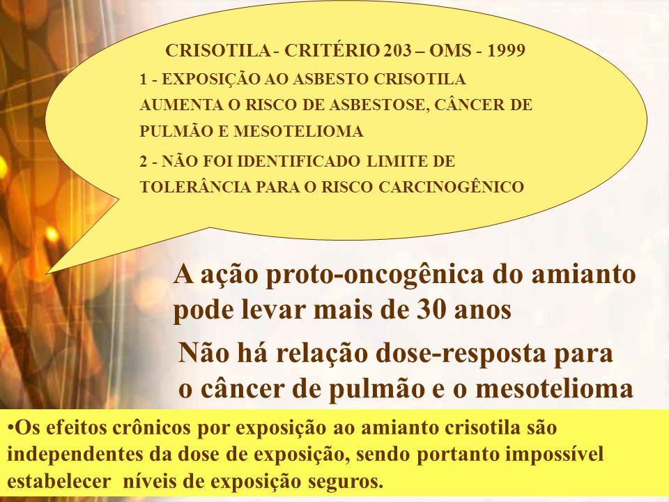 CRISOTILA - CRITÉRIO 203 – OMS - 1999