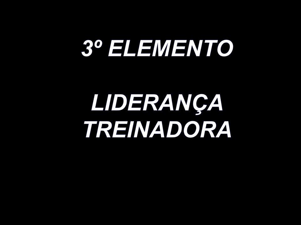 3º ELEMENTO LIDERANÇA TREINADORA