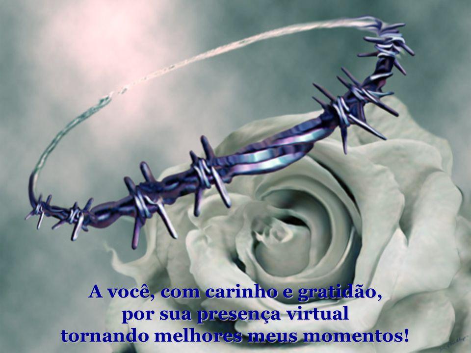 A você, com carinho e gratidão, por sua presença virtual tornando melhores meus momentos!