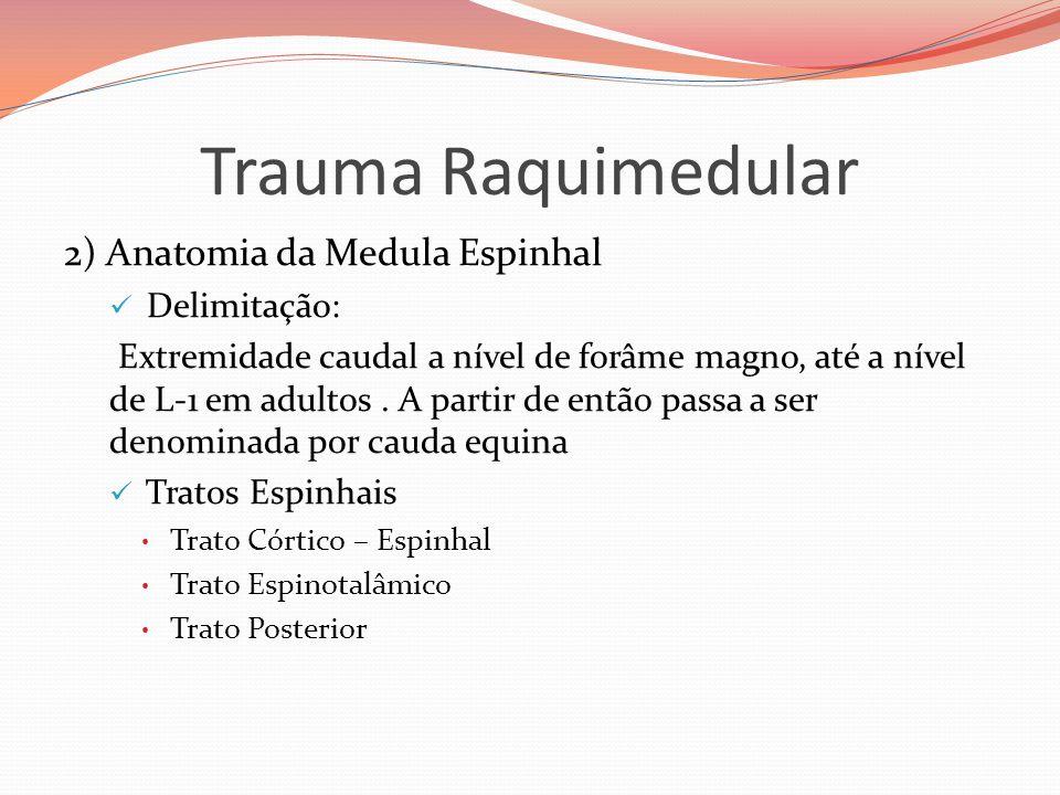 Trauma Raquimedular 2) Anatomia da Medula Espinhal Delimitação: