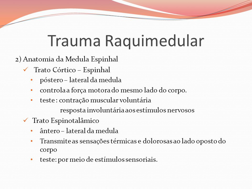Trauma Raquimedular 2) Anatomia da Medula Espinhal