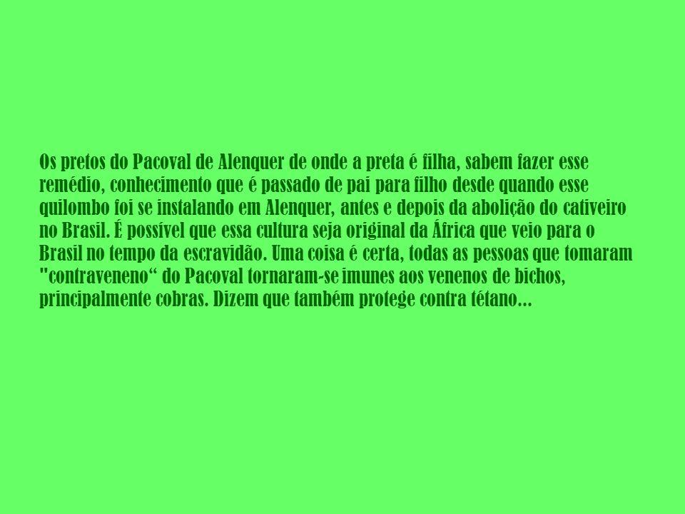 Os pretos do Pacoval de Alenquer de onde a preta é filha, sabem fazer esse remédio, conhecimento que é passado de pai para filho desde quando esse quilombo foi se instalando em Alenquer, antes e depois da abolição do cativeiro no Brasil.