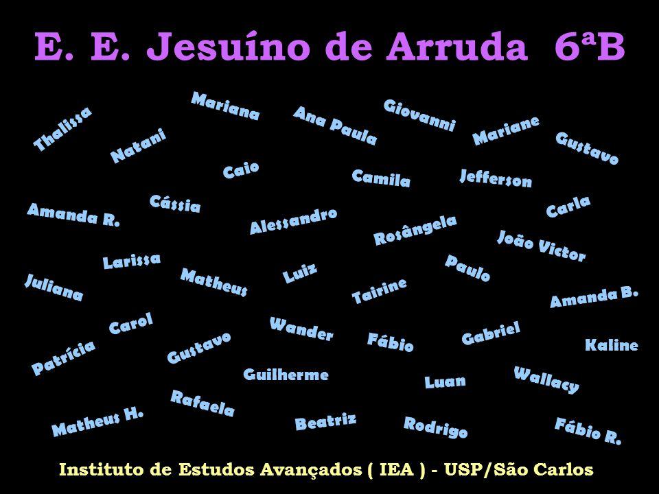 Instituto de Estudos Avançados ( IEA ) - USP/São Carlos
