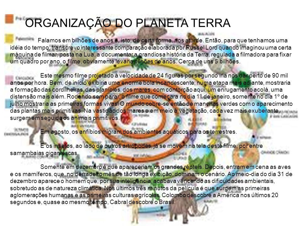 ORGANIZAÇÃO DO PLANETA TERRA