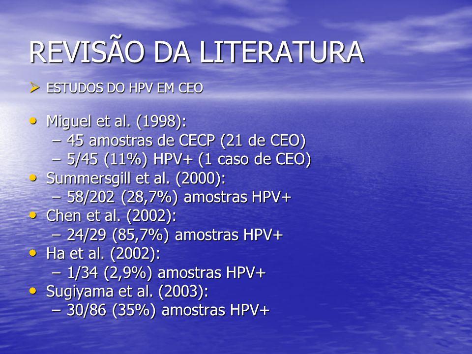 REVISÃO DA LITERATURA Miguel et al. (1998):
