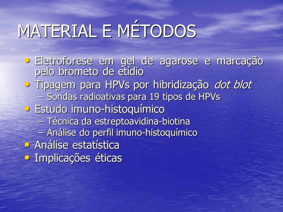 MATERIAL E MÉTODOS Eletroforese em gel de agarose e marcação pelo brometo de etídio. Tipagem para HPVs por hibridização dot blot.