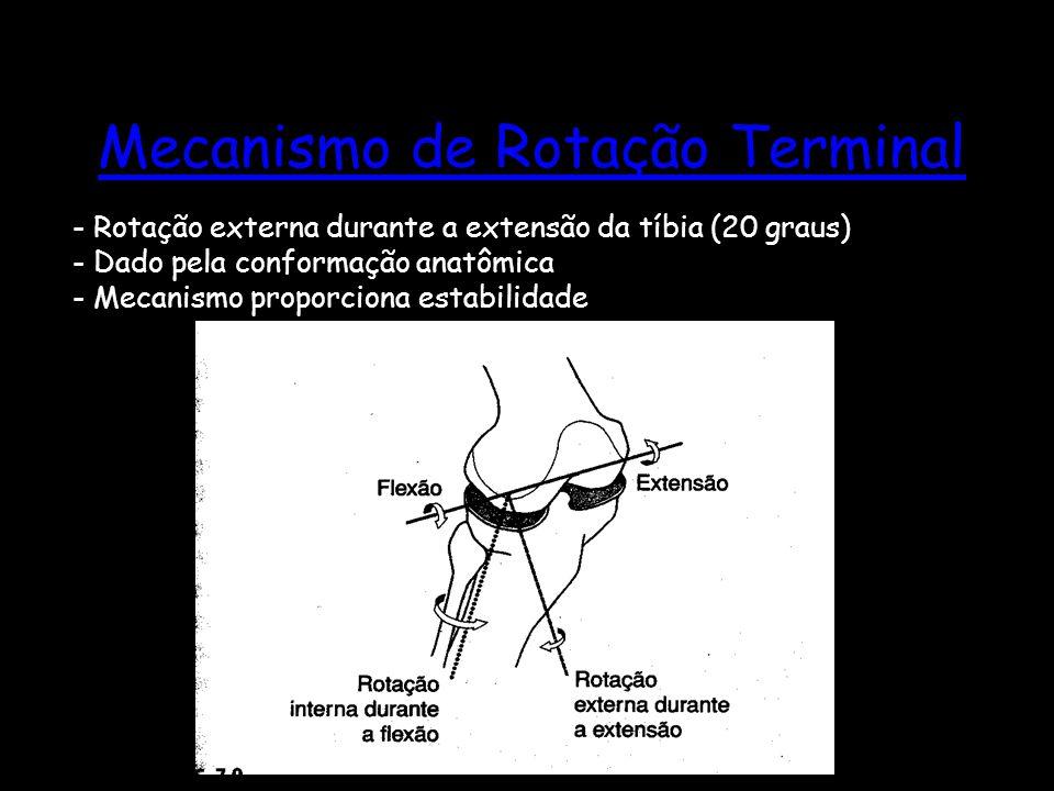 Mecanismo de Rotação Terminal