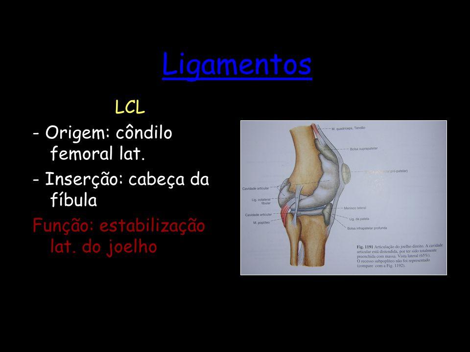 Ligamentos LCL - Origem: côndilo femoral lat.
