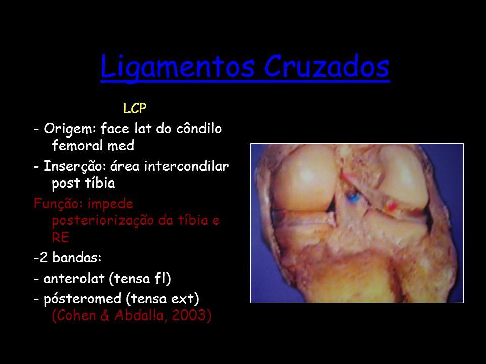 Ligamentos Cruzados LCP - Origem: face lat do côndilo femoral med