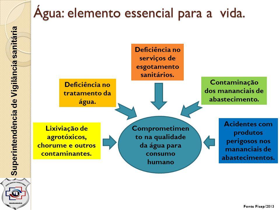 Água: elemento essencial para a vida.