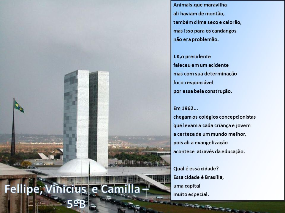 Fellipe, Vinicius e Camilla – 5ºB