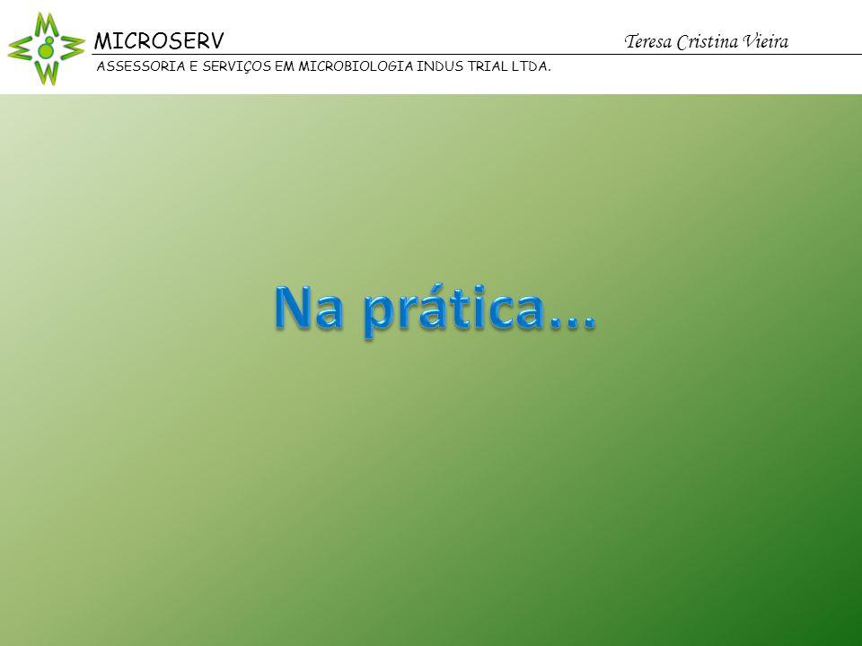 Na prática... MICROSERV Teresa Cristina Vieira MICROSERV