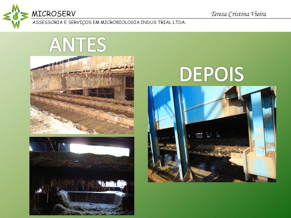 ANTES DEPOIS MICROSERV Teresa Cristina Vieira