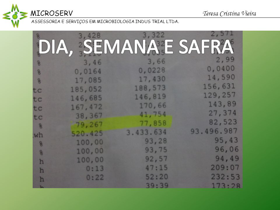 DIA, SEMANA E SAFRA MICROSERV Teresa Cristina Vieira MICROSERV