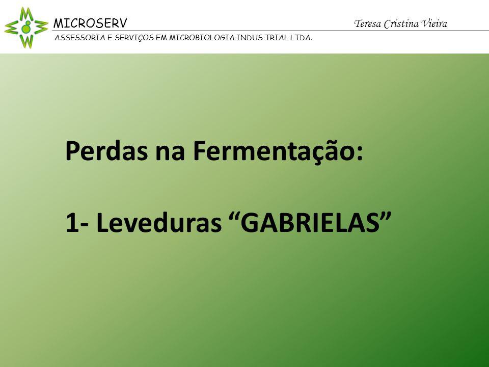 Perdas na Fermentação: 1- Leveduras GABRIELAS