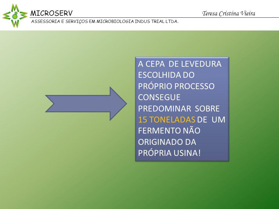 MICROSERV Teresa Cristina Vieira. ASSESSORIA E SERVIÇOS EM MICROBIOLOGIA INDUS TRIAL LTDA.