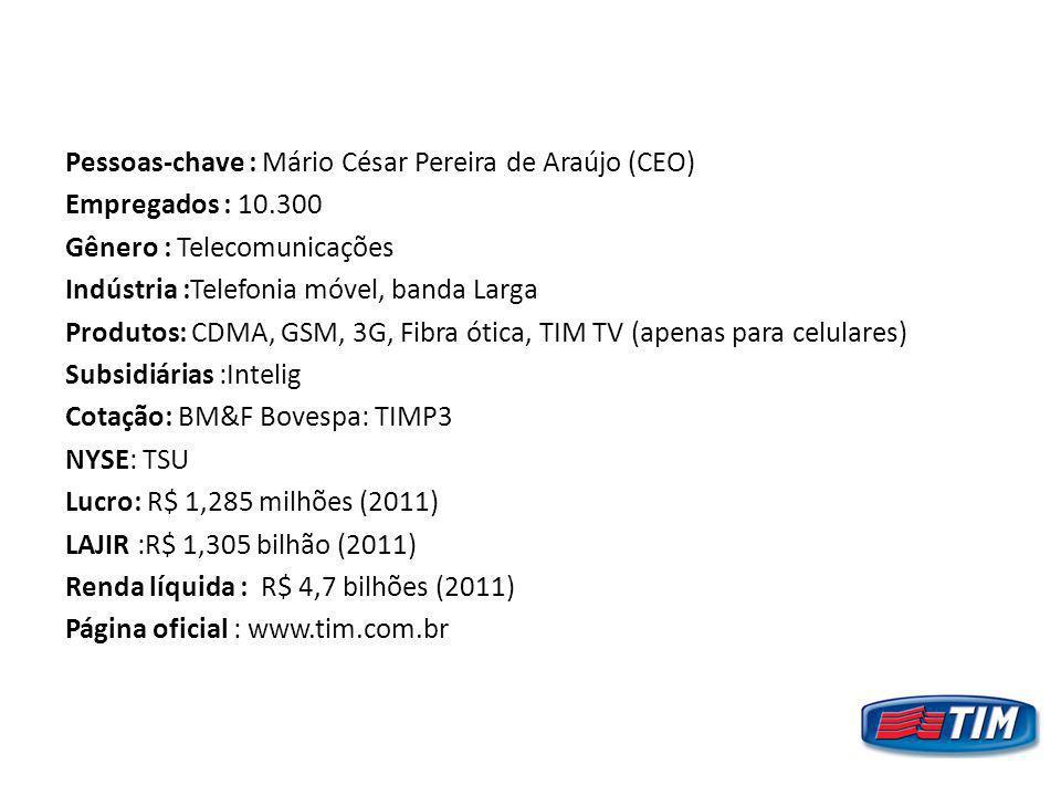 Pessoas-chave : Mário César Pereira de Araújo (CEO) Empregados : 10