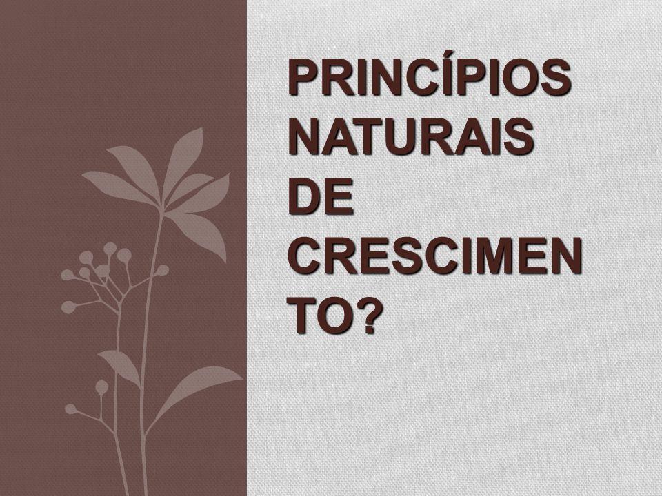 Princípios Naturais de Crescimento