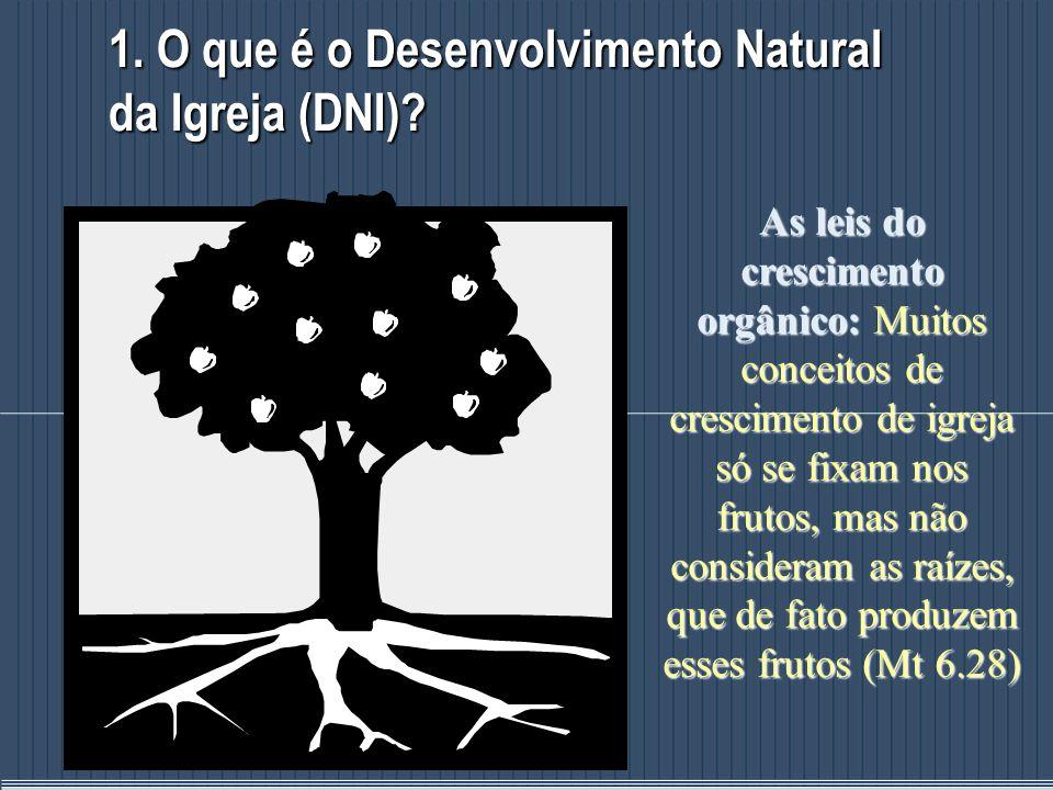 1. O que é o Desenvolvimento Natural da Igreja (DNI)