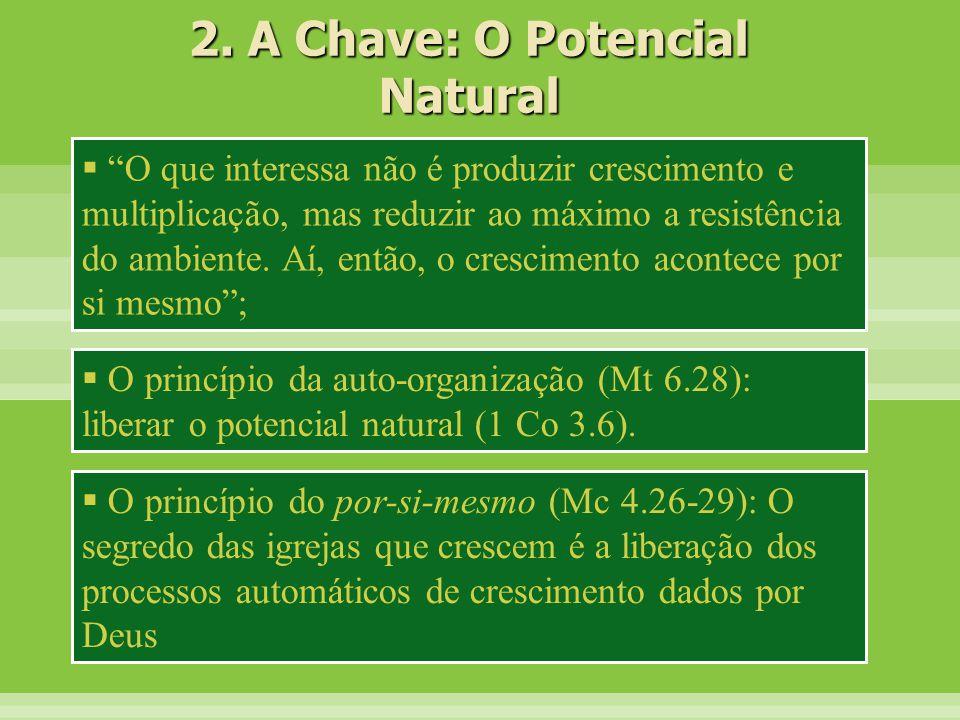 2. A Chave: O Potencial Natural