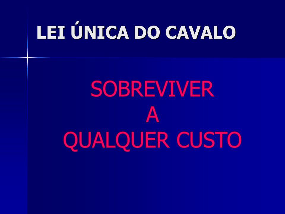 LEI ÚNICA DO CAVALO SOBREVIVER A QUALQUER CUSTO