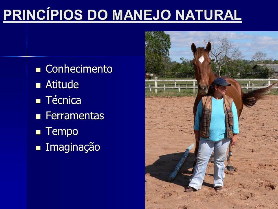 PRINCÍPIOS DO MANEJO NATURAL