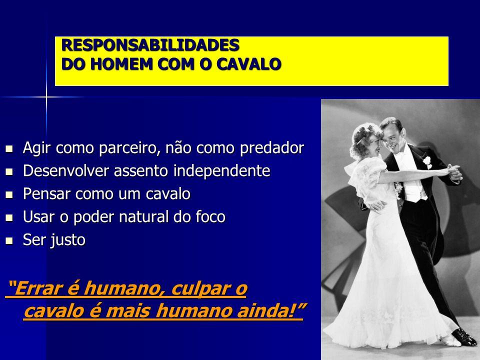 RESPONSABILIDADES DO HOMEM COM O CAVALO