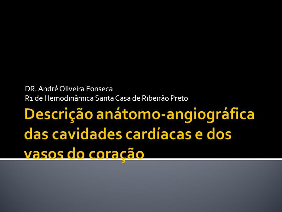 DR. André Oliveira Fonseca