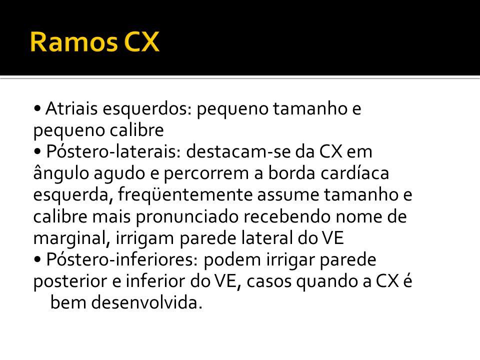 Ramos CX