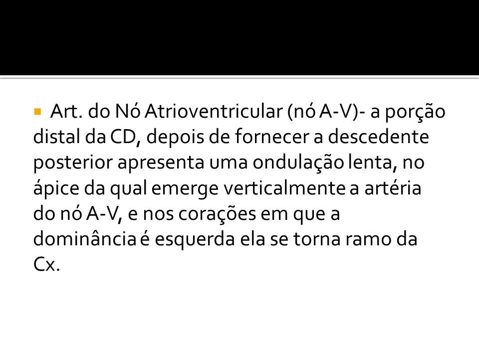 Art. do Nó Atrioventricular (nó A-V)- a porção