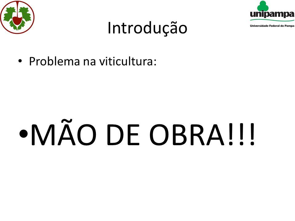 Introdução Problema na viticultura: MÃO DE OBRA!!!