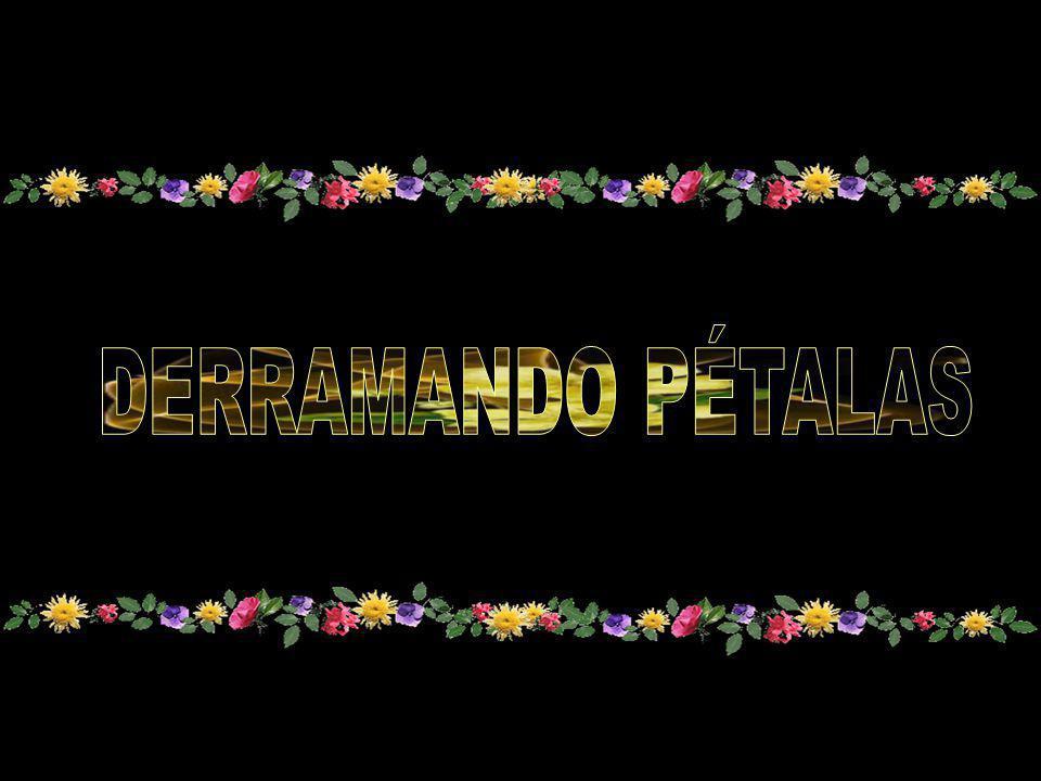 DERRAMANDO PÉTALAS