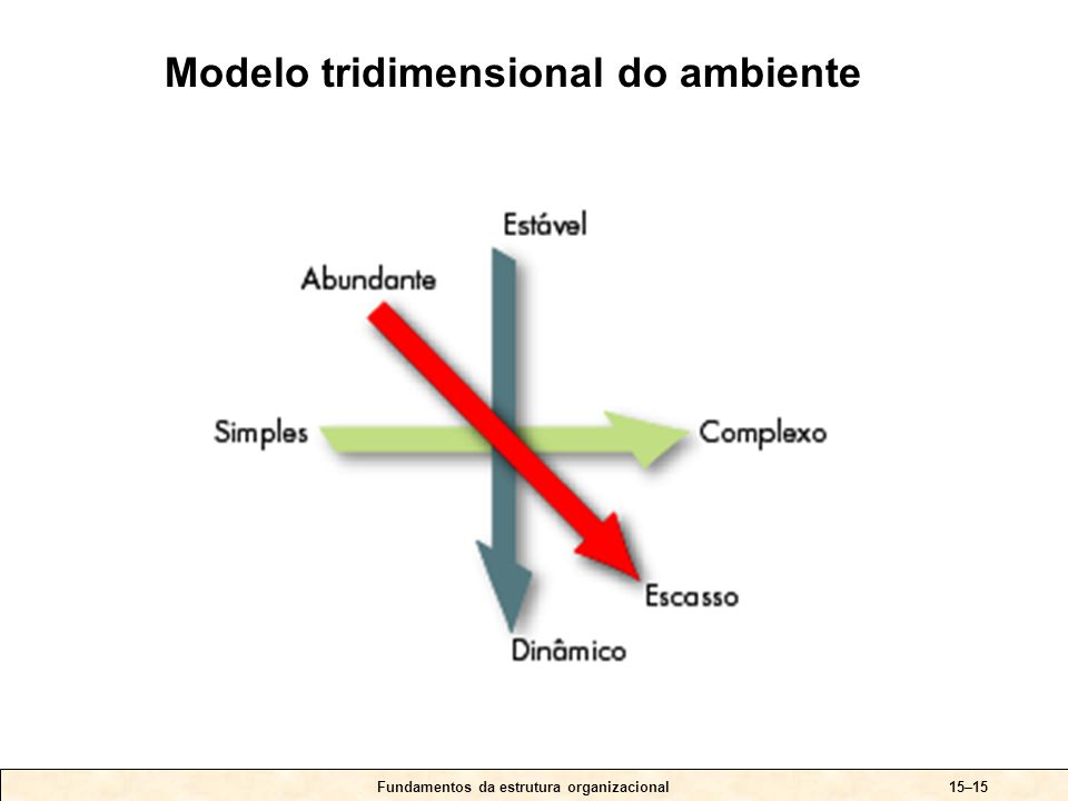 Fundamentos da estrutura organizacional