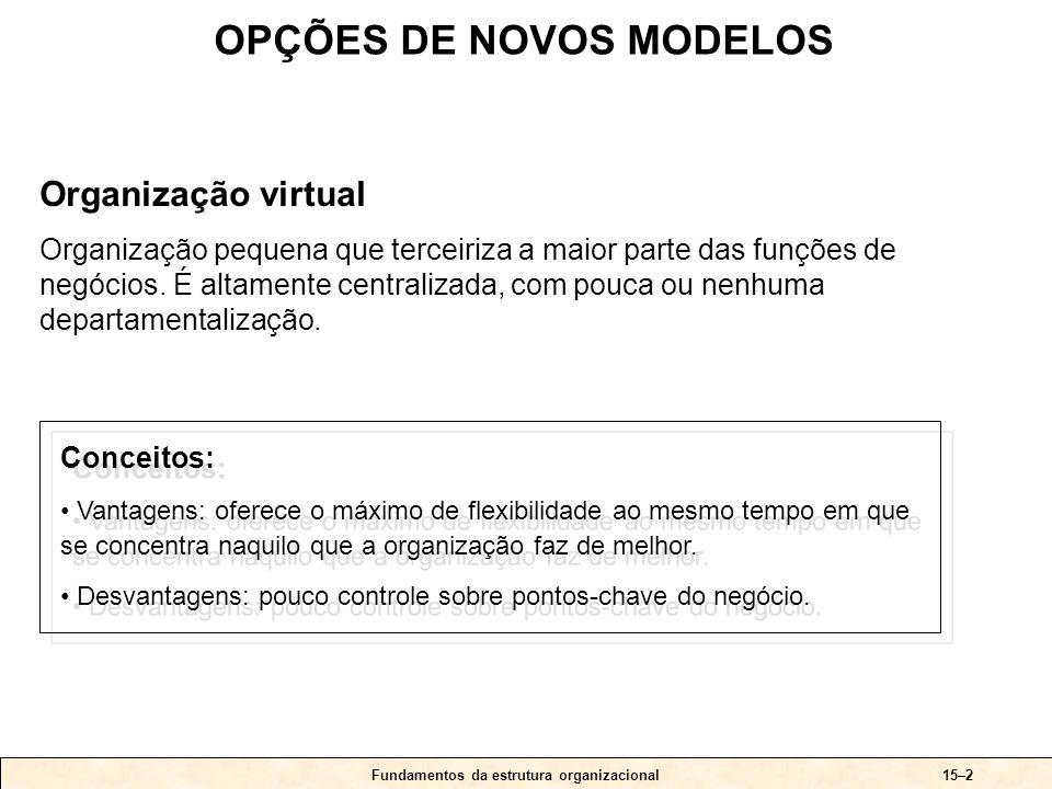 Uma organização virtual Fundamentos da estrutura organizacional