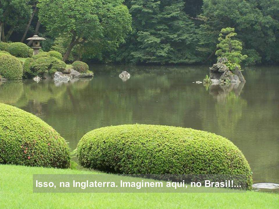 Isso, na Inglaterra. Imaginem aqui, no Brasil!...