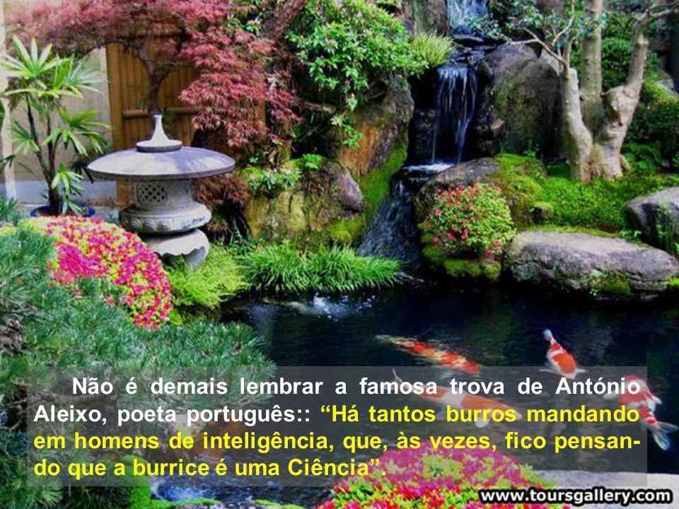 Não é demais lembrar a famosa trova de António Aleixo, poeta português:: Há tantos burros mandando em homens de inteligência, que, às vezes, fico pensan-do que a burrice é uma Ciência .
