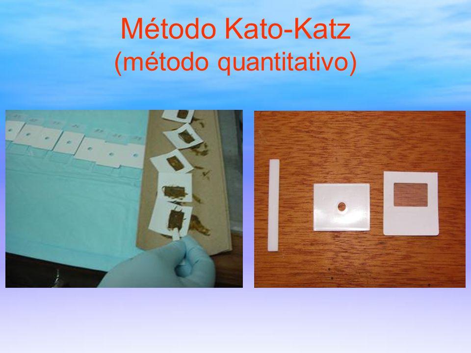 Método Kato-Katz (método quantitativo)