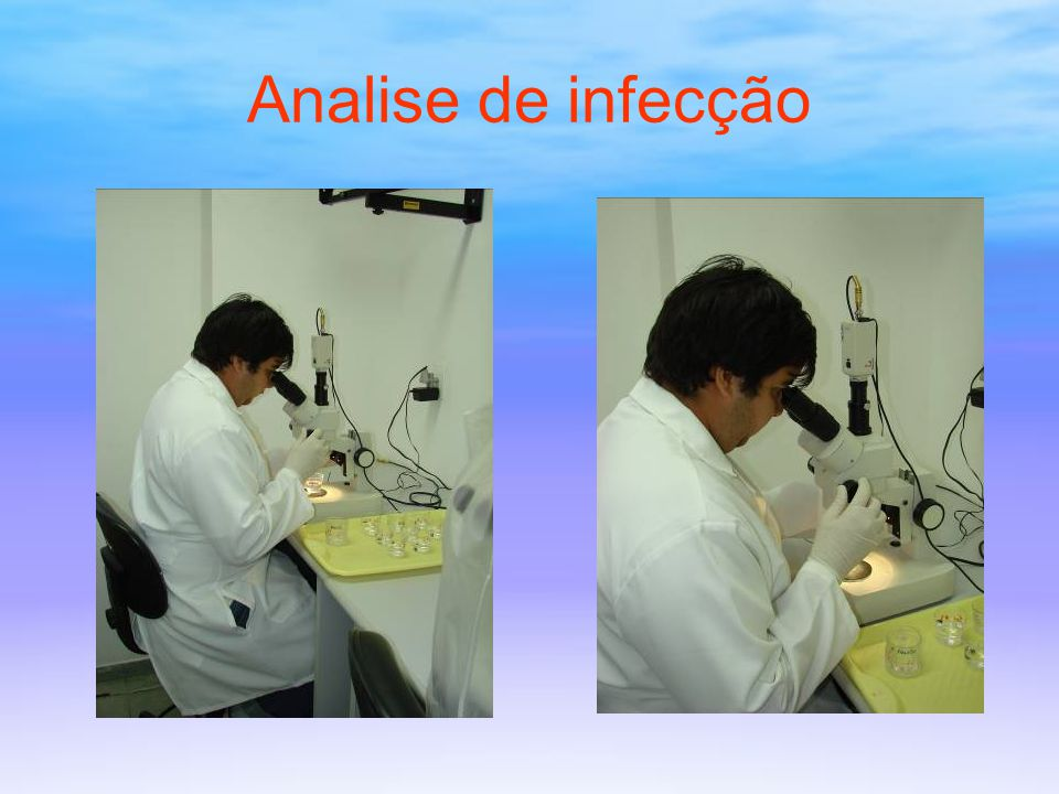 Analise de infecção