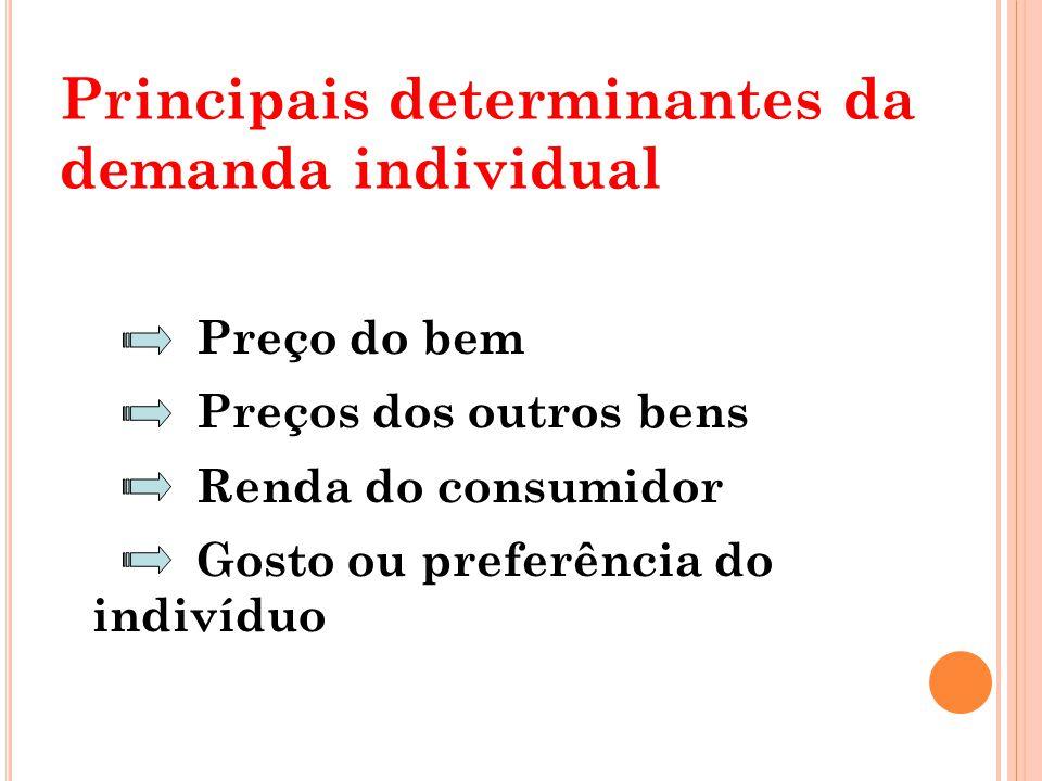 Principais determinantes da demanda individual
