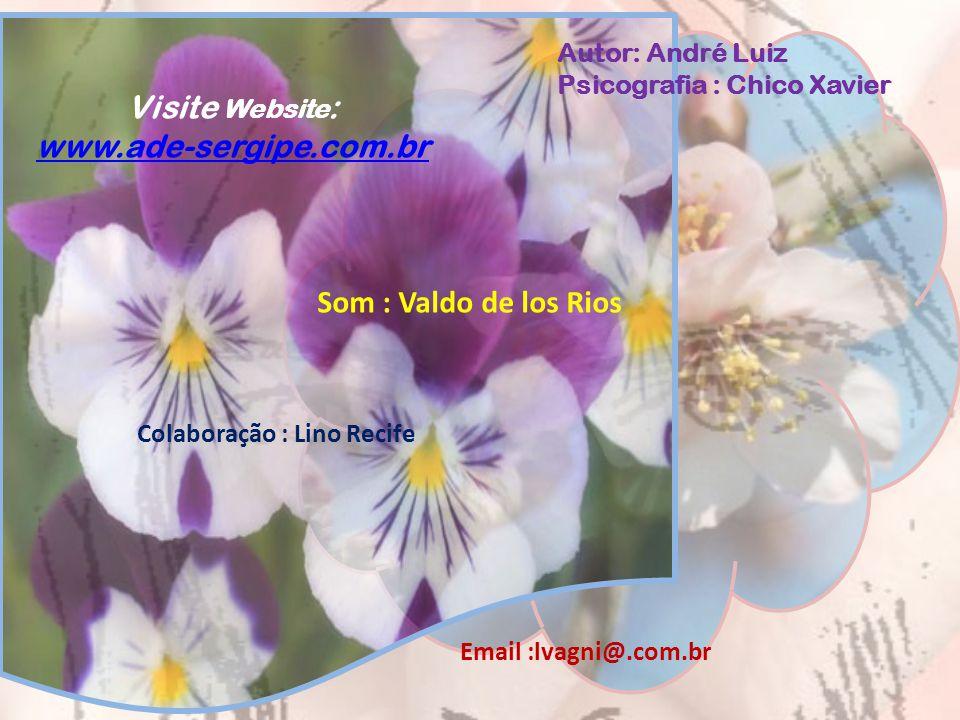 Visite Website: www.ade-sergipe.com.br