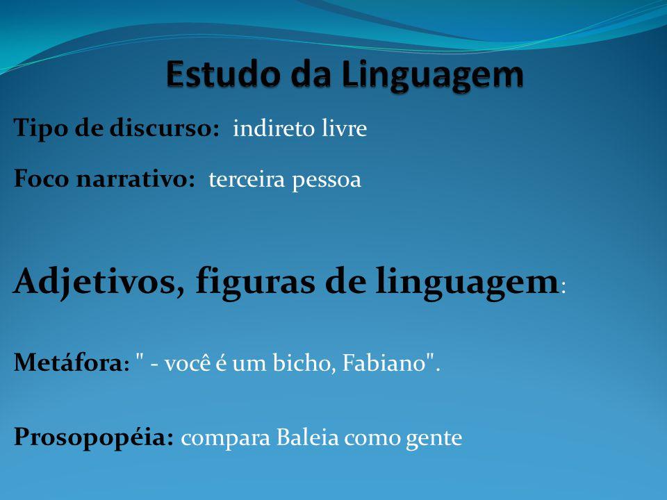 Estudo da Linguagem Adjetivos, figuras de linguagem: