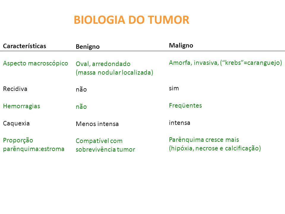 BIOLOGIA DO TUMOR Características Maligno Benigno Aspecto macroscópico